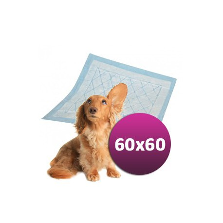 TIP! Plena pro psy DOGGIES 60 x 60 cm